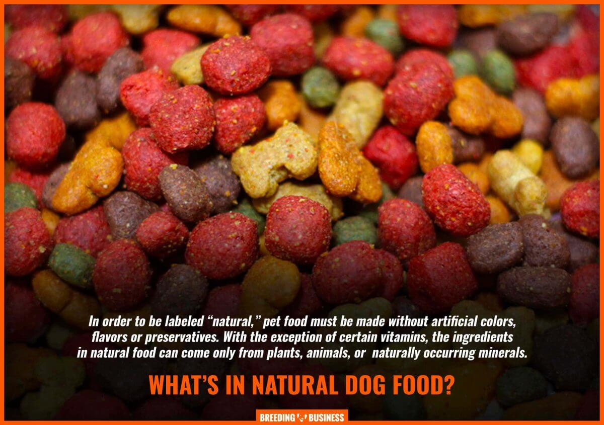 definition of natural dog food