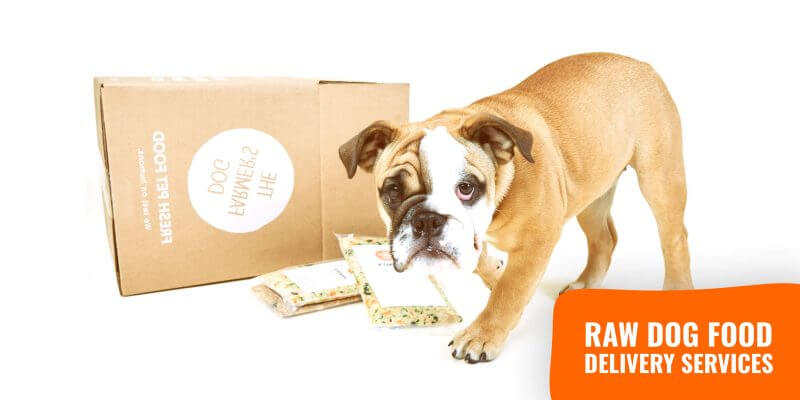 raw dog food delivery services (review)