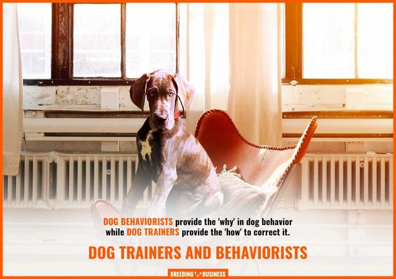 differences between dog trainers and behaviorists