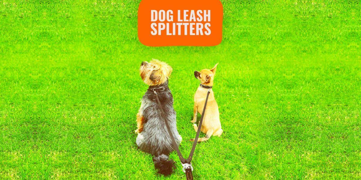Leash Splitter for Walking Two Dogs Tuff Lock Dog Leash Swivel Coupler