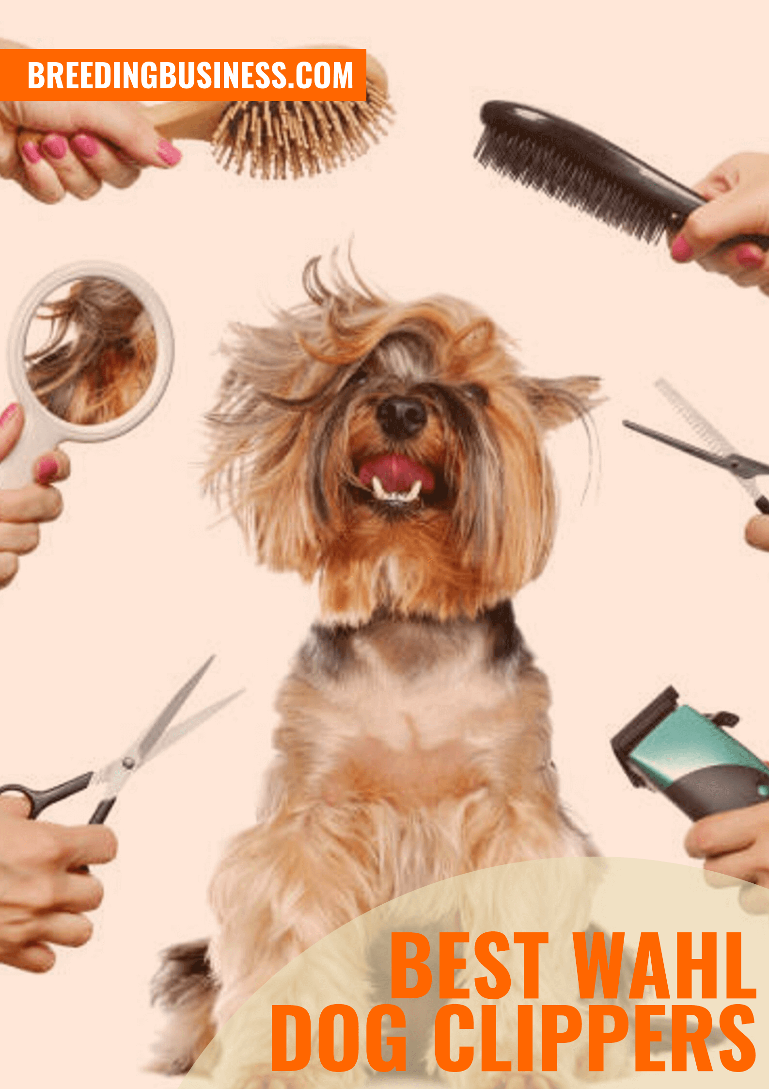 Shopping Guide: Wahl Dog Clippers