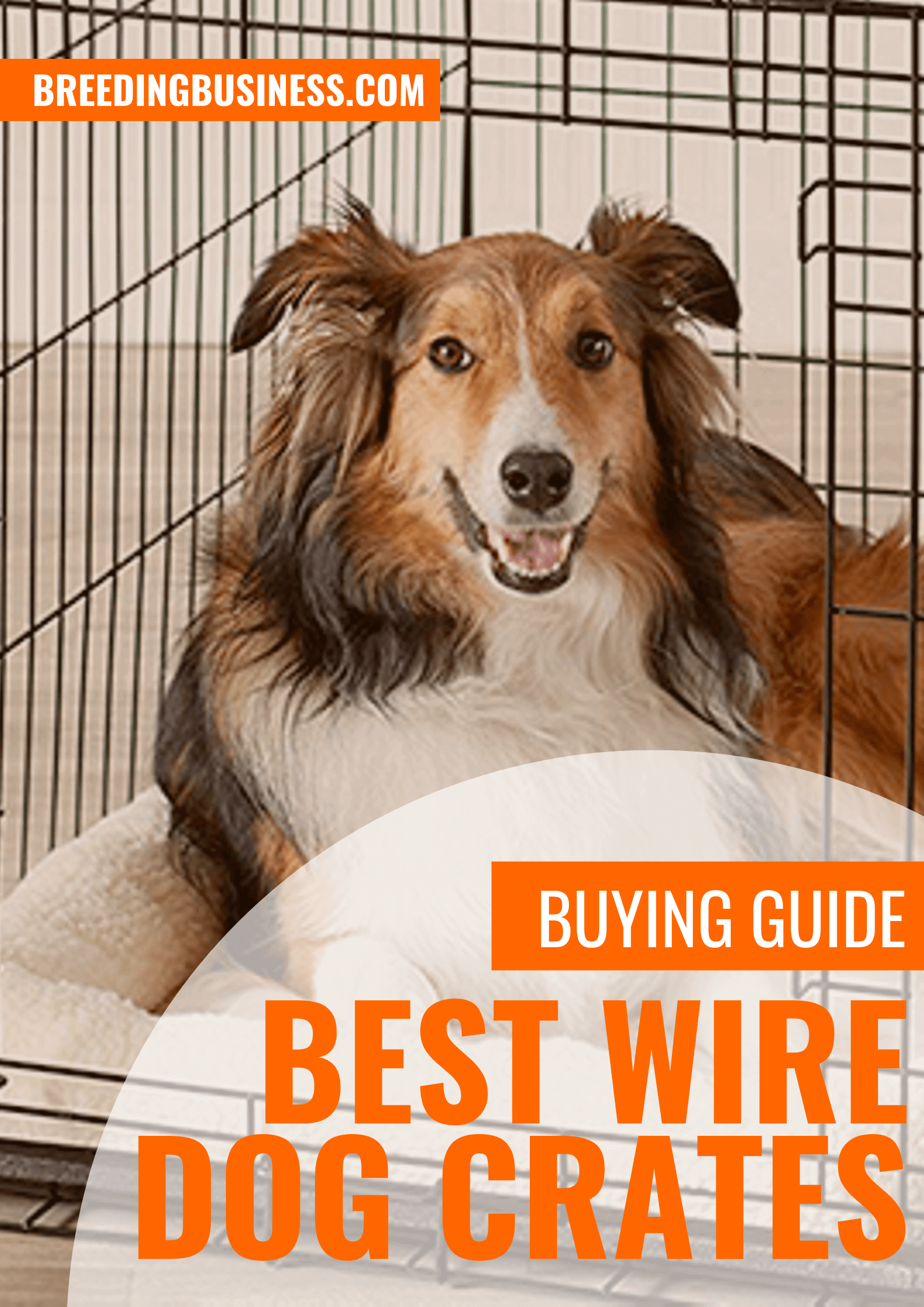 Buying Guide: metal and wire dog crates
