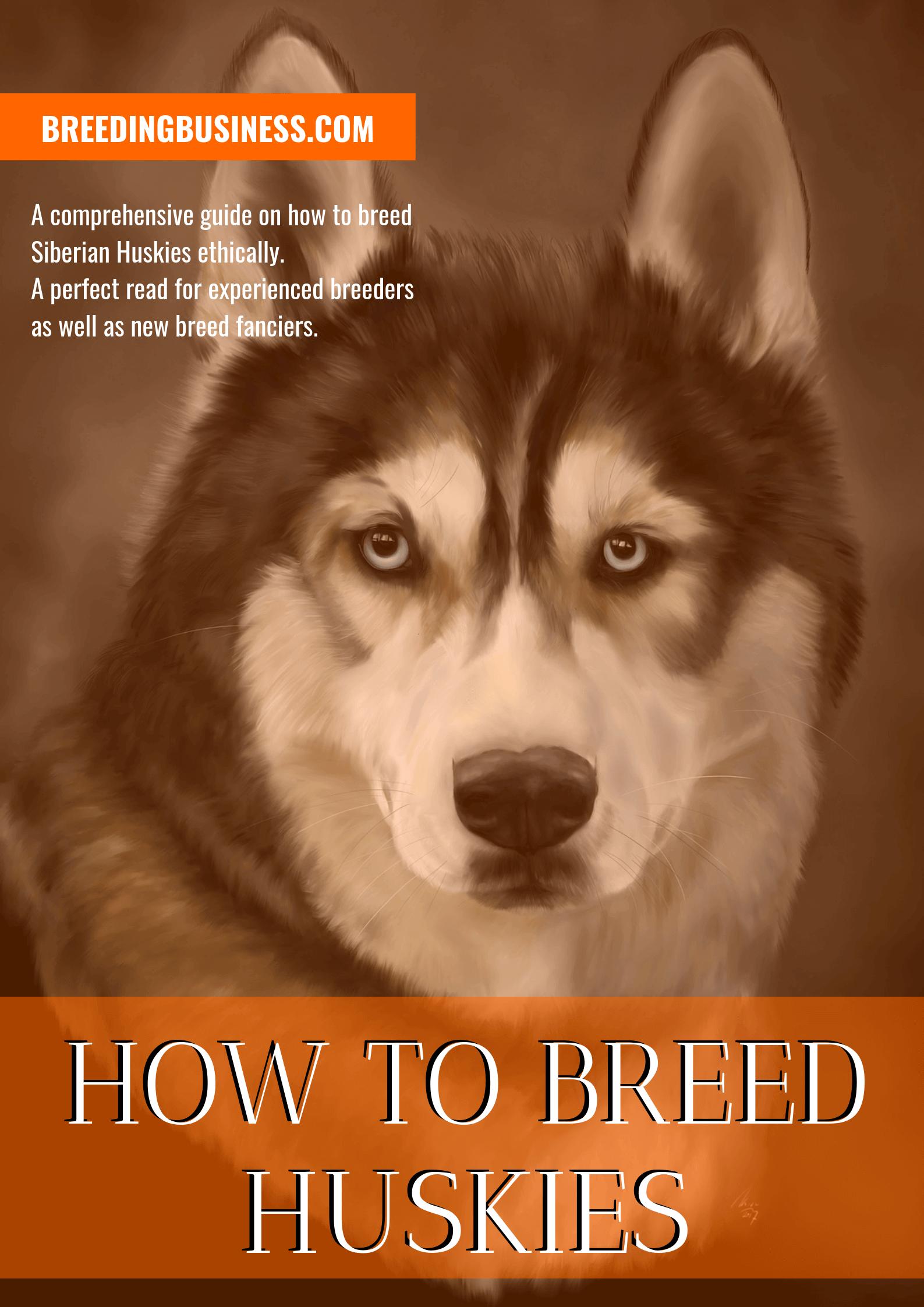 breeding Huskies