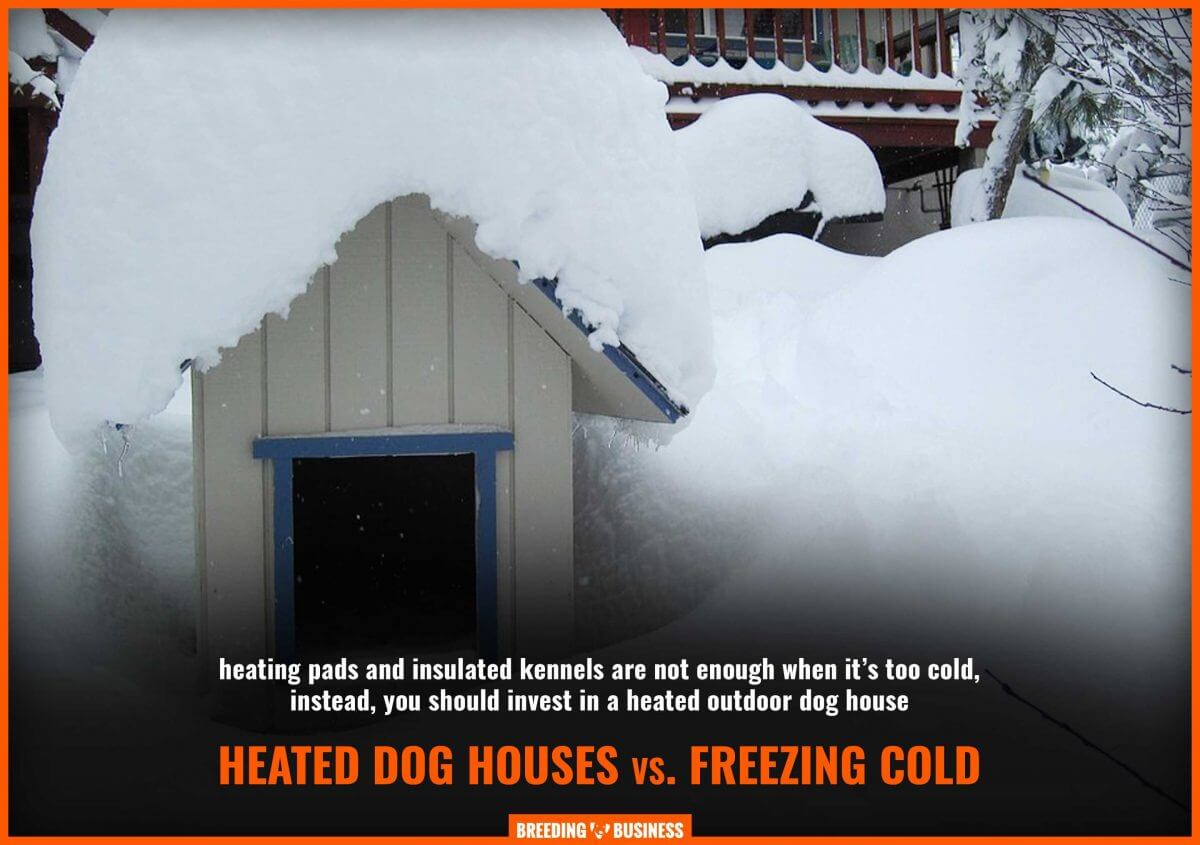 best heated outdoor dog houses