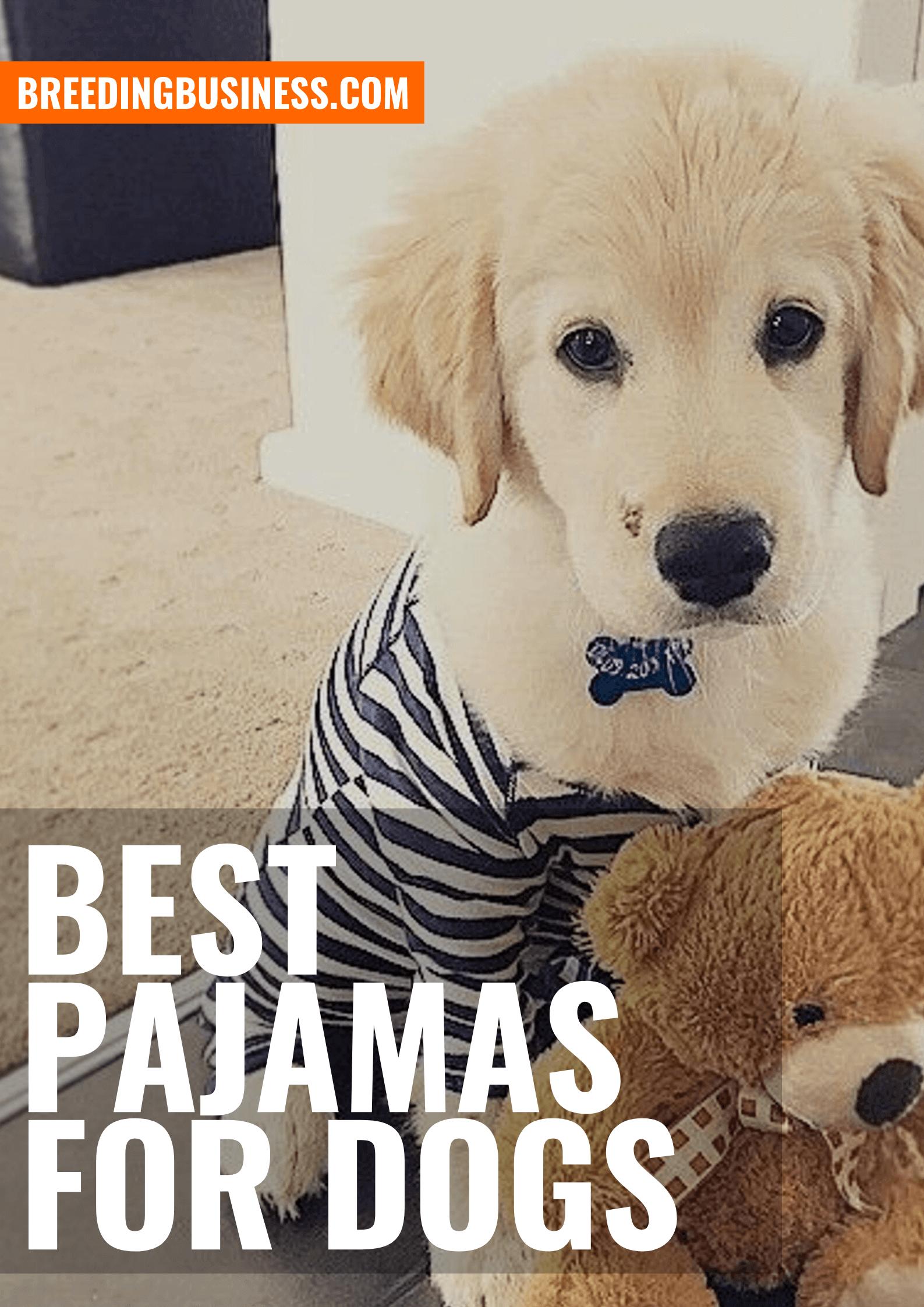 Top Dog Pajamas – Buying Guide and Reviews