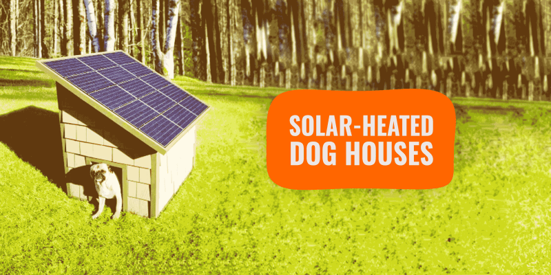 Solar-Heated Dog Houses