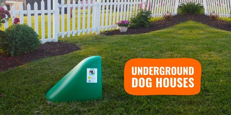 underground dog houses