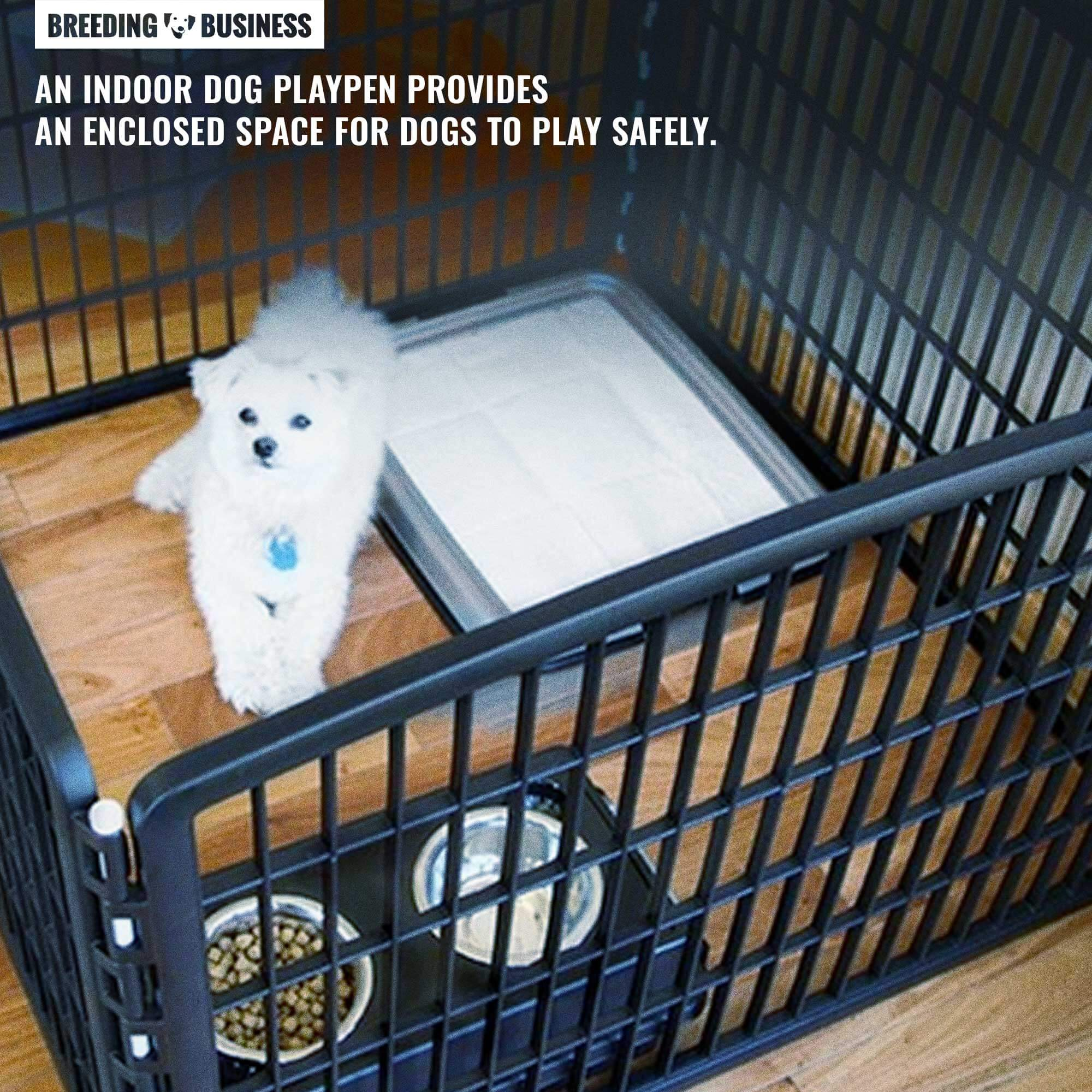 best indoor dog playpens