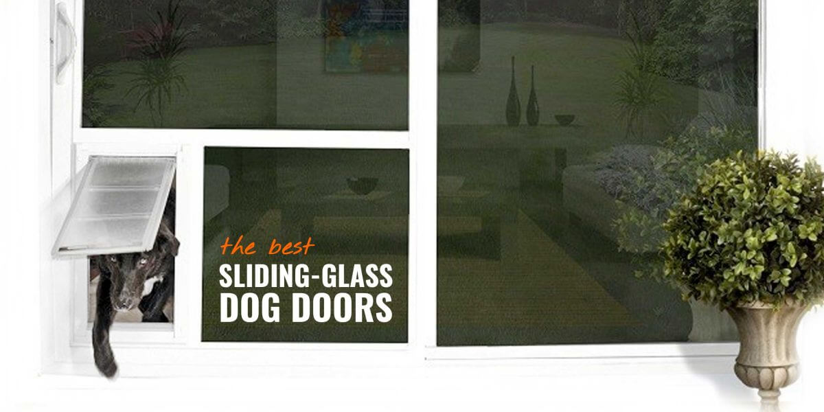 7 Best Sliding Glass Dog Doors Reviews Safety Insulation Faq
