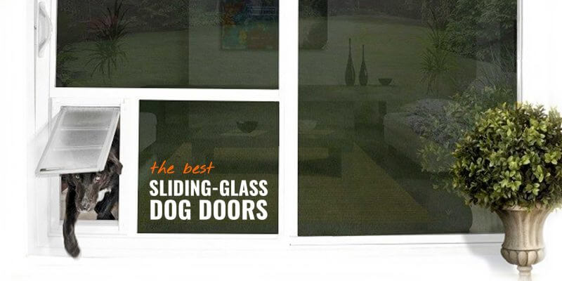 best sliding glass dog doors