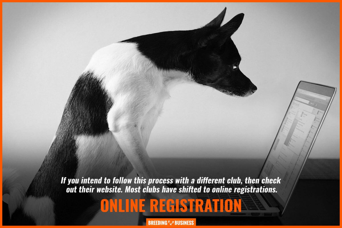 online registration for kennels